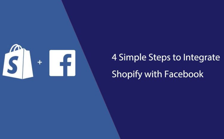 Shopify with facebook ads